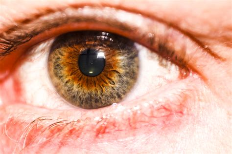 what is hazel eye color scientists say your eye color reveals information about