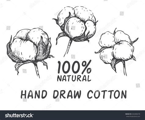 vector set hand draw ink cotton stock vector 304480478