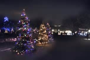 brookfield zoo lights brookfield zoo lights explore yeary s photos on