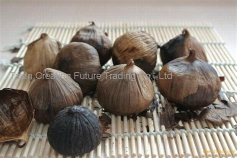 Herbal Black Garlic Bawang Hitam Original Supplier Herbal Indonesia one clove black garlic products china one clove black garlic supplier
