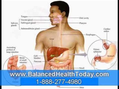 Liver And Gallbladder Detox Plan by Liver And Gallbladder Flush Directions Part 1