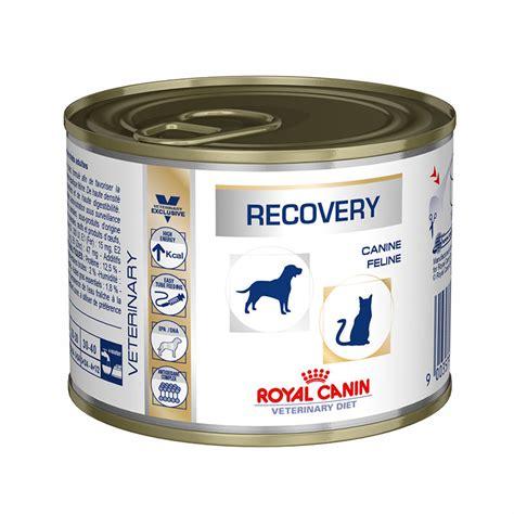 Royal Canin Recovery By Shegho 45 royal canin recovery lata precio gato alimentaci 243 n