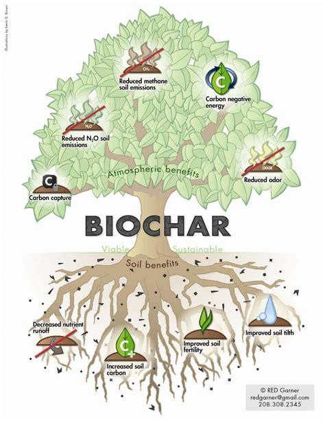 Bio Degrades Into Plain Water by International Biochar Initiative International Biochar