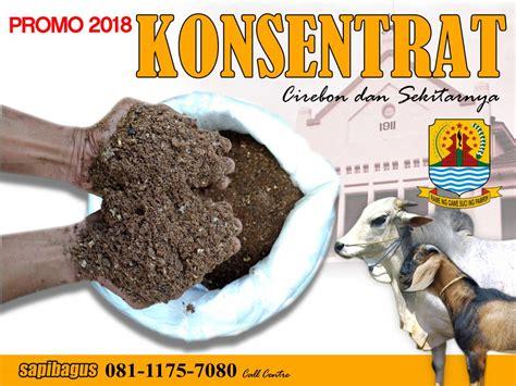 Jual Pollard Gandum Jakarta promo jual konsentrat pakan sapi dan kambing di cirebon