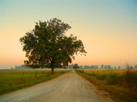 Search In Alabama Alabama Scenery Images