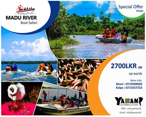 madu ganga boat safari price sri lanka holidays safari holidays in sri lanka