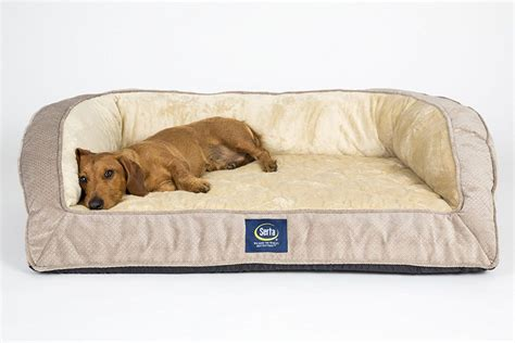 best large dog beds extra large pet beds top extra large dog beds with memory