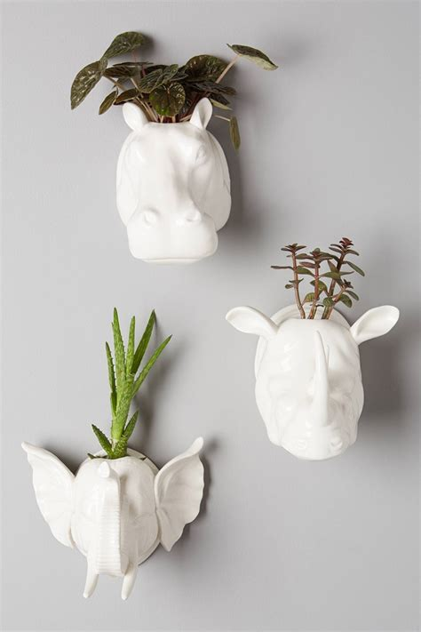 elephant wall planter 8 easy ways to create a vertical garden wall inside your home