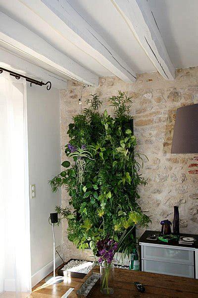le mur v233g233tal des plantes 224 la verticale galerie