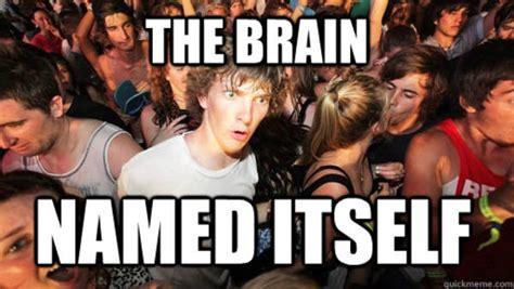 Suddenly Meme - image 383359 sudden clarity clarence know your meme
