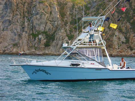boat rental cabo san lucas boats cabo san lucas cabo boats charters boat rentals