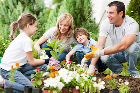 gardening tips from your vancouver chiropractor