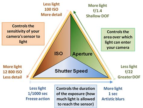 the exposure triangle in nature photography