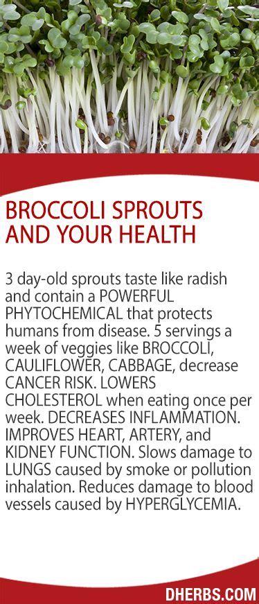 Dherbs Detox Symptoms by 251 Best Food As Medicine Images On
