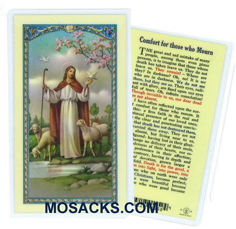 comfort for those who mourn comfort for those who mourn laminated holy card 800 352