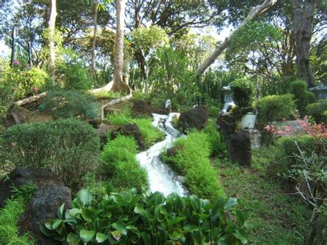 Botanical Garden La In The Gardens Picture Of La Union Botanical Garden San Fernando La Union Tripadvisor