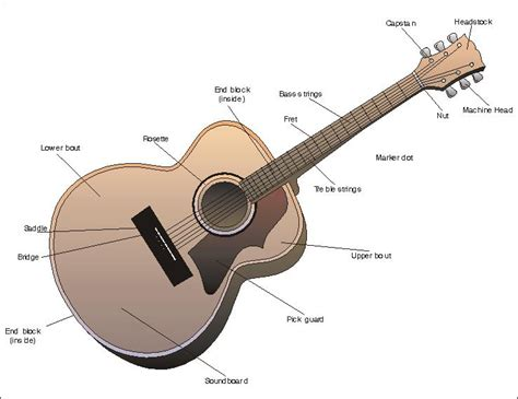 parts of the guitar how to guitar lessons