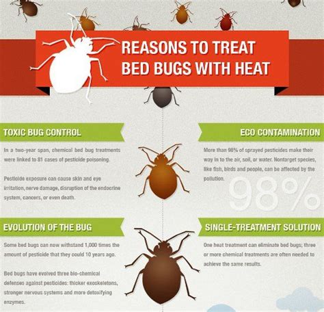 heat treatment for bed bugs reviews reasons to treat bed bugs with heat bedbugs pinterest