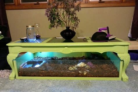 Handmade Tortoise Table - handmade tortoise table keep your tortoise by the coffee