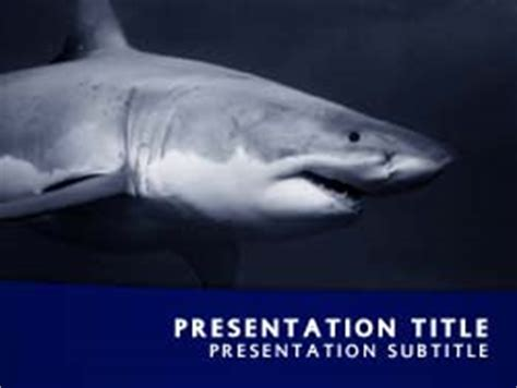 Royalty Free Shark Powerpoint Template In Blue Shark Powerpoint