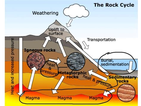 diagram of how sedimentary rocks are formed rock cycle diagram diagram site