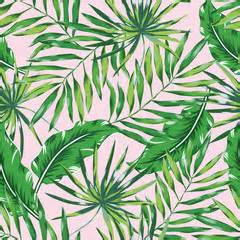 Hawaiian Print Upholstery Fabric Search Photos Category Plants And Flowers Gt Trees Gt Palm Tree