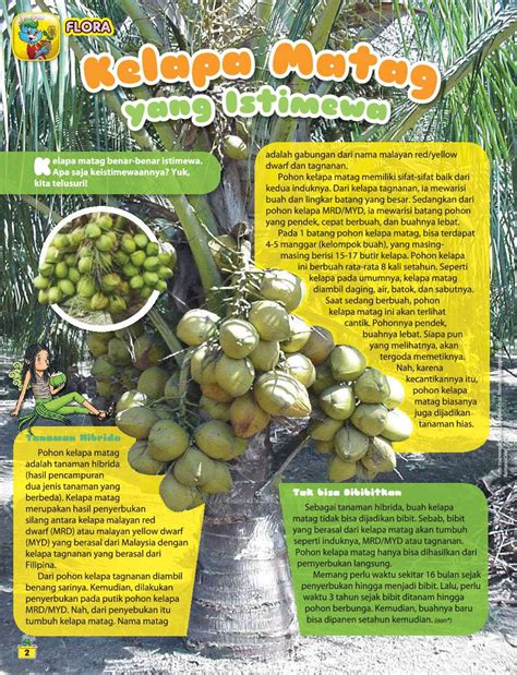 Majalah Bobo 14 Juli 2016 jual majalah bobo ed 14 juli 2017 scoop indonesia