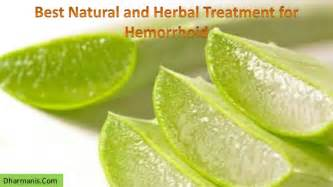 Best natural and herbal treatment for hemorrhoid