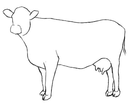 Cow Drawing Outline by 25 Best Ideas About Cow Illustration On Cow Cow Painting And Cow