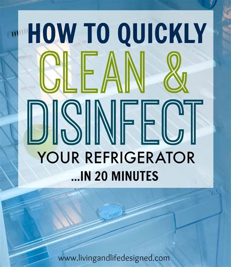 how to clean your house in twenty minutes reality source refrigerator cleaning guide to clean disinfect your