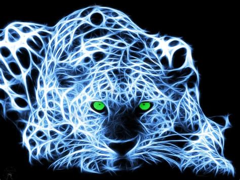 Kaos 3d Tiger Neon 17 best images about fractal images on cats places and giraffe baby
