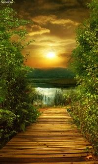 wallpaper android path lenovo a1000 wallpapers path to sun android wallpapers