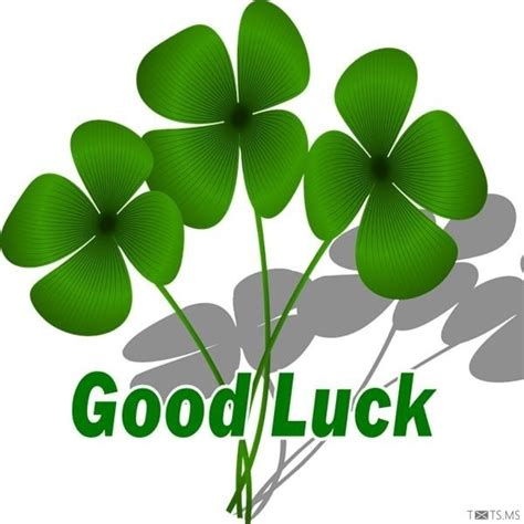 gud luck good luck images www imgkid com the image kid has it