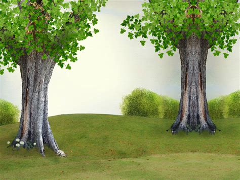 powerpoint template nature tree ppt background powerpoint backgrounds for free