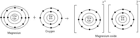 particle diagram of magnesium oxide questions and answers cbse icse solutions cbse icse