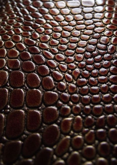 pattern photoshop snake 43 best surfaces leather skin images on pinterest