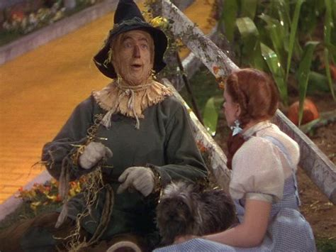 only had a brain commercial who sings it the wizard of oz images dorothy meets the scarecrow