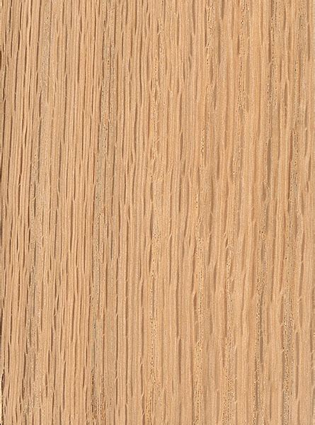 Willow Flooring by Willow Oak The Wood Database Lumber Identification