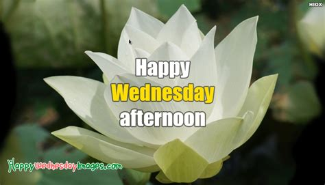 happy wednesday afternoon  happywednesdayimagescom