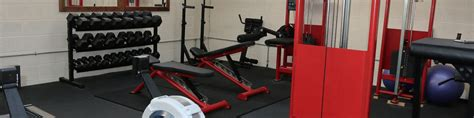 forza bench press forza bench press for sale 28 images 100 forza bench