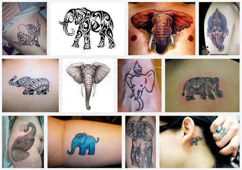 elephant tattoo with trunk up meaning source 3 online collections