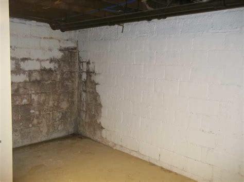 mold on walls in basement baker s waterproofing basement waterproofing photo album water and mold in basement in