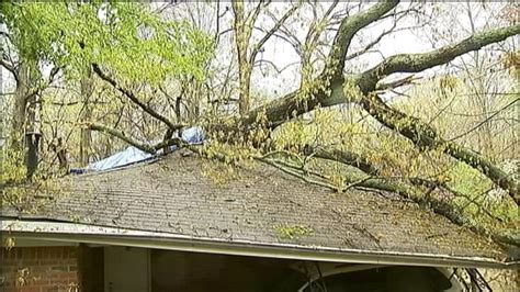 tree falls on house tree falls on house 28 images tree falling on house jpg tree falls on house in