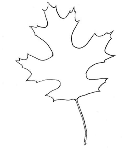 oak leaf template autumn leaf outline cliparts co