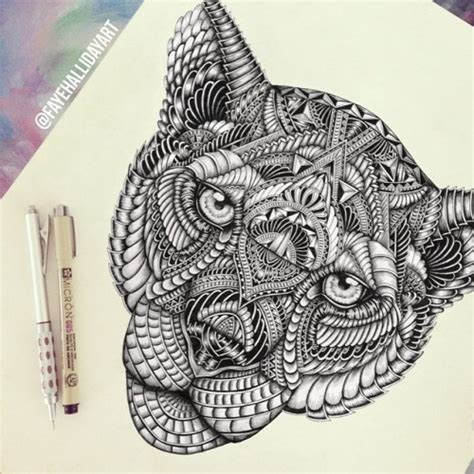 lion zentangle recruitment school spirit pinterest lion drawings tumblr
