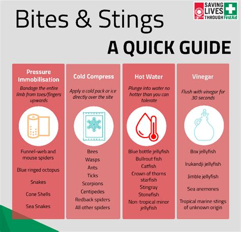 rubber sting ideas and techniques bites and stings aid treatment guide nursing