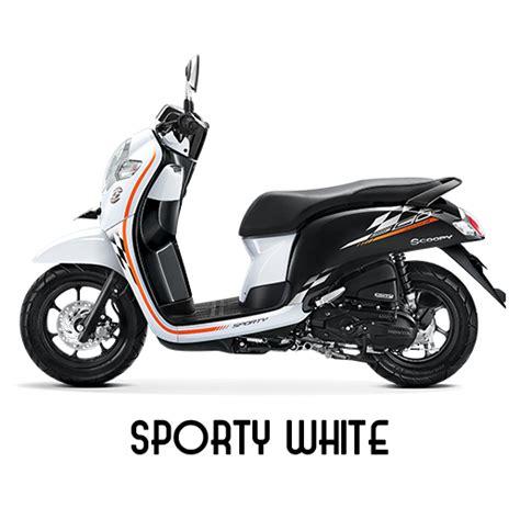 Alarm Motor Scoopy pilihan warna harga dan striping honda scoopy terbaru