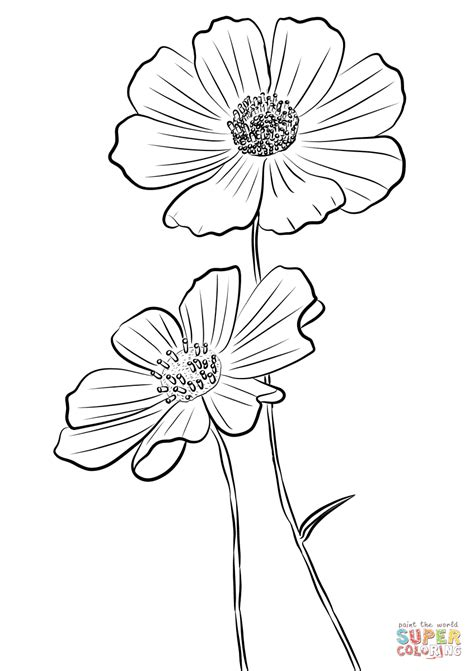 Cosmo Coloring Pages