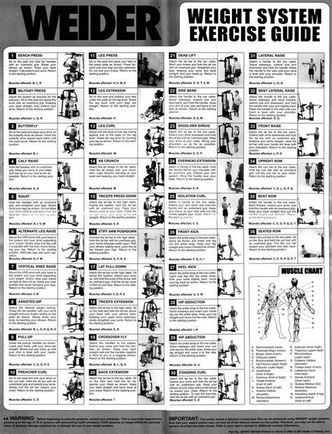 York Multi Gym Workout Chart Download
