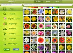 flower pedia hd for ios free download and software